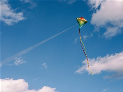 photo of kite in sky