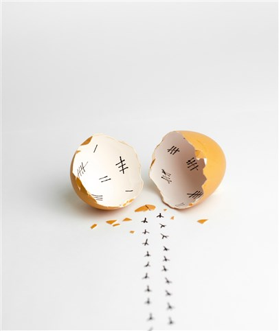 photo of open egg shell
